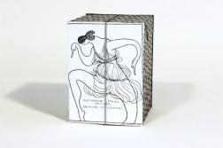 Kiste 43